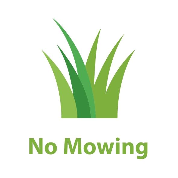 50178220-0-no-mowing--artificia