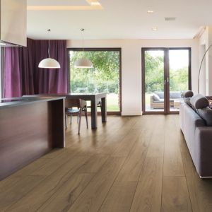 Laminate Flooring - 10mm Mammut Plus AC5 Residence Oak Nature (EIR) 185x24cm